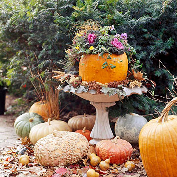 Make a Pumpkin Planter