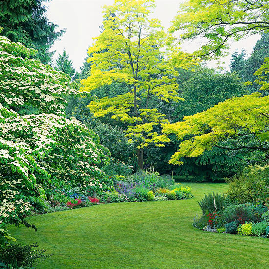 pacific northwest lawn care calendar and lawn maintenance tips - Garden