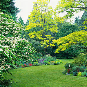Lovely Regional Gardening Advice Part 13