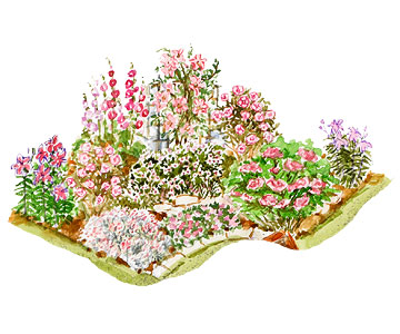 Dreaming in Pink Garden Plan