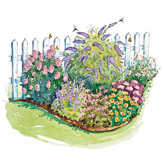 Bird and butterfly garden plan - Free garden plans ireland ...