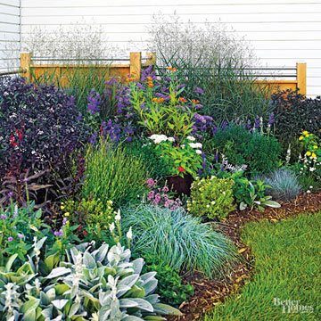 Before-and-After Garden Makeovers