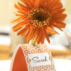 Table Tent Card Holder