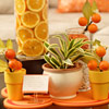 Get Creative with Orange Slices