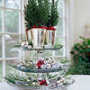 Cranberry Cake Plate Tower