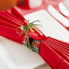 Christmas Light Napkin