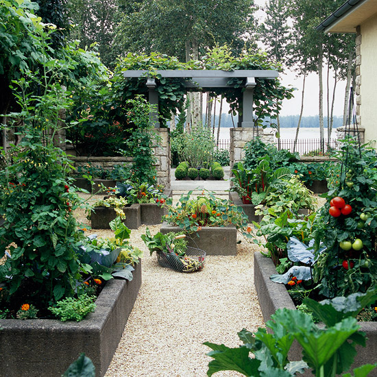 Grow a vegetable garden in raised beds for Vegetable garden bed design