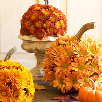 Decorate Using Fall Finds