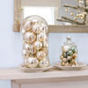 Glass Cloche Mantel Display