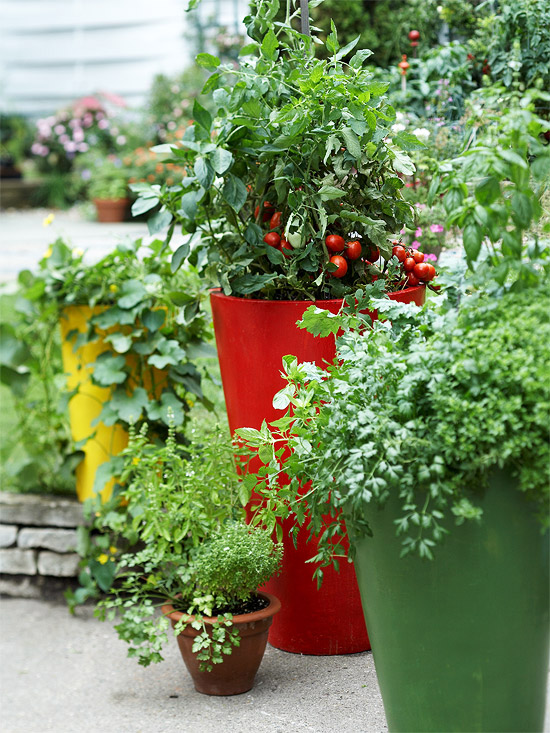 vegetable container garden materials