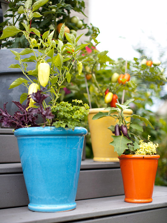 Container Vegetable Garden Ideas 1 of 23 1 Of 23