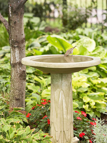 Birdbaths Buying Guide