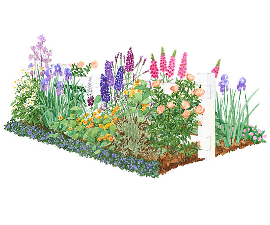 Colorful front yard cottage garden plan for Garden plans and plants