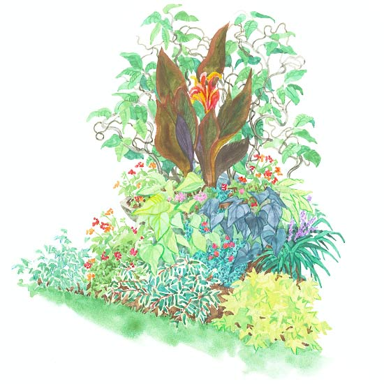 Tropical-Look Garden Plan
