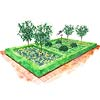 Fresh and Formal Garden