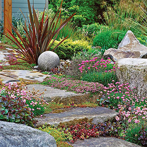 Problem-Solving Perennials for Tough Gardens