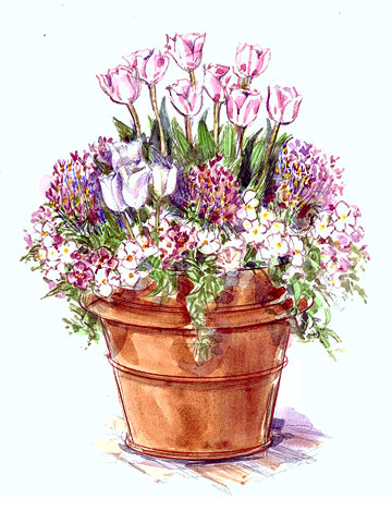 Pretty Pink Container Garden Plan