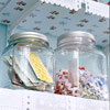See-Through Craft Storage