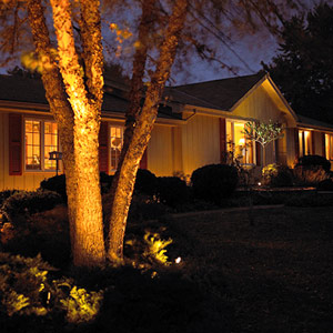 Options for Landscaping Lights