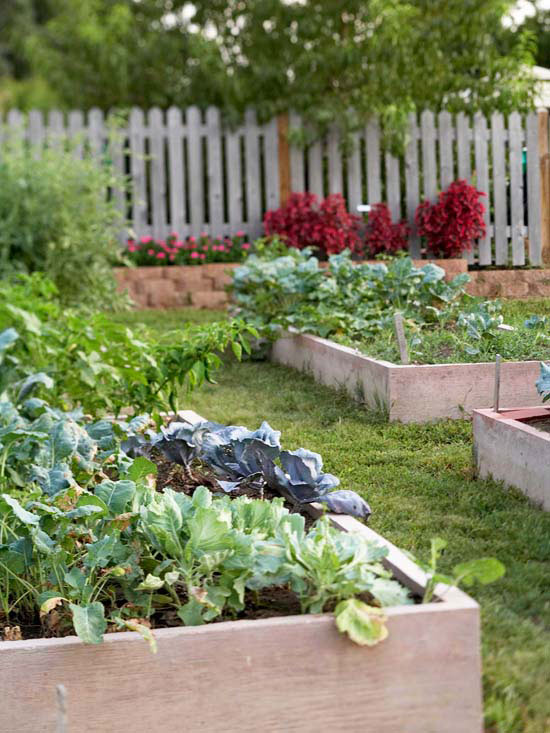 Design Tip: Use Long-Lasting Materials for a Raised Vegetable Garden