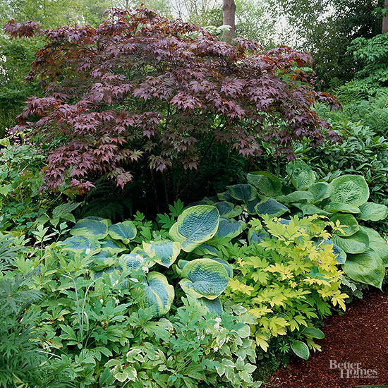 Garden Design With Stunning Shade Garden Design Ideas With Landscape Garden  From Bhg.com