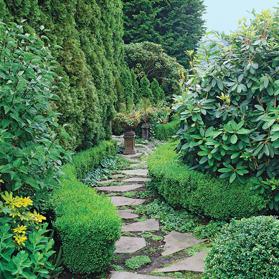 Use Evergreens To Make An Impact In Your Landscape