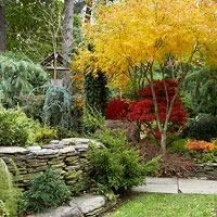 Wow-Worthy Fall Garden Ideas