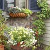 Suburban Cottage, Window Box