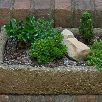Build a Hypertufa Trough