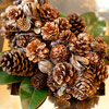 A Pinecone Bouquet