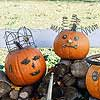 Pumpkins with Fancy Headpieces
