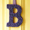 Jelly Bean Front Door Monogram