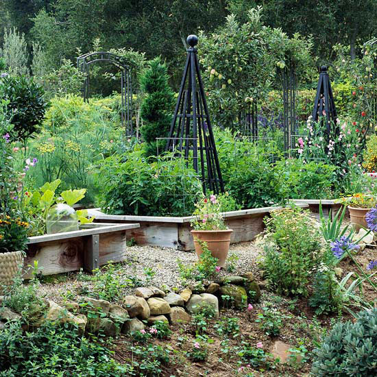 Design Tip: Grow Up with Vines in Raised Garden Beds