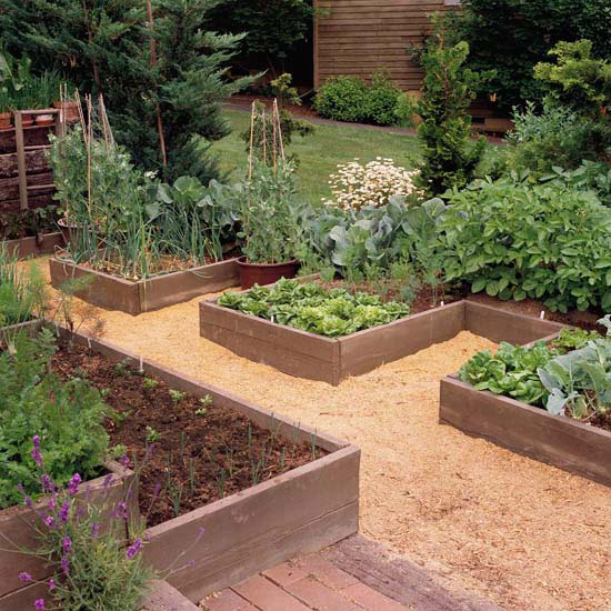 Design Tip: Come Up with a Pattern for Your Raised Garden Beds