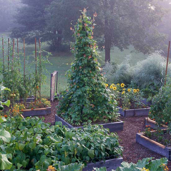Benefit: Make Your Garden More Attractive with Raised Gardens
