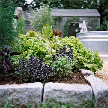 Benefit: Never Till Again with Raised Garden Beds