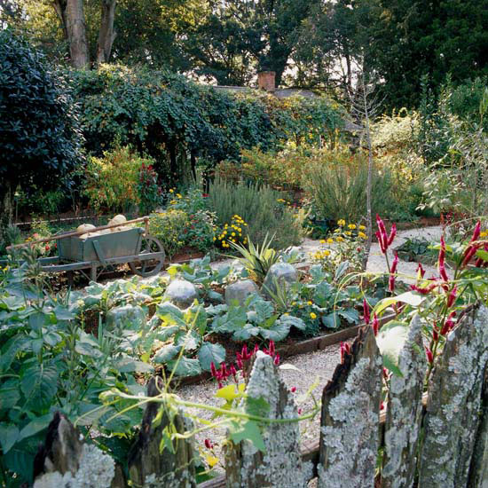 Design Tip: Space Raised Garden Beds Correctly