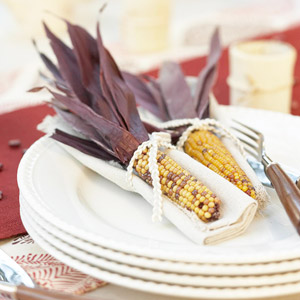 Effortless Napkins for Thanksgiving
