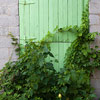 Cool Green Door