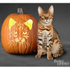 Bengal Cat Pumpkin