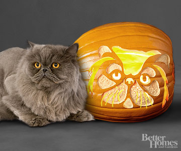 Persian Cat Pumpkin Stencil