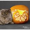 Persian Cat Pumpkin