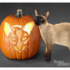 Siamese Cat Pumpkin