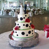 Polka Dots and Sugar Roses Cake