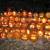 Pumpkin Gathering