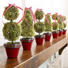Topiaries in a Row