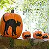 Cat and Mouse Pumpkin Stencils