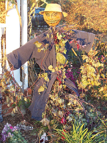 Your Best Photos: Outdoor Decorations for Harvest Season & Halloween