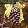 Frosted Pinecone Christmas Tree Ornaments