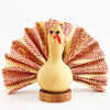 Kids' Table: Dried Gourd Turkey with Feather Napkin